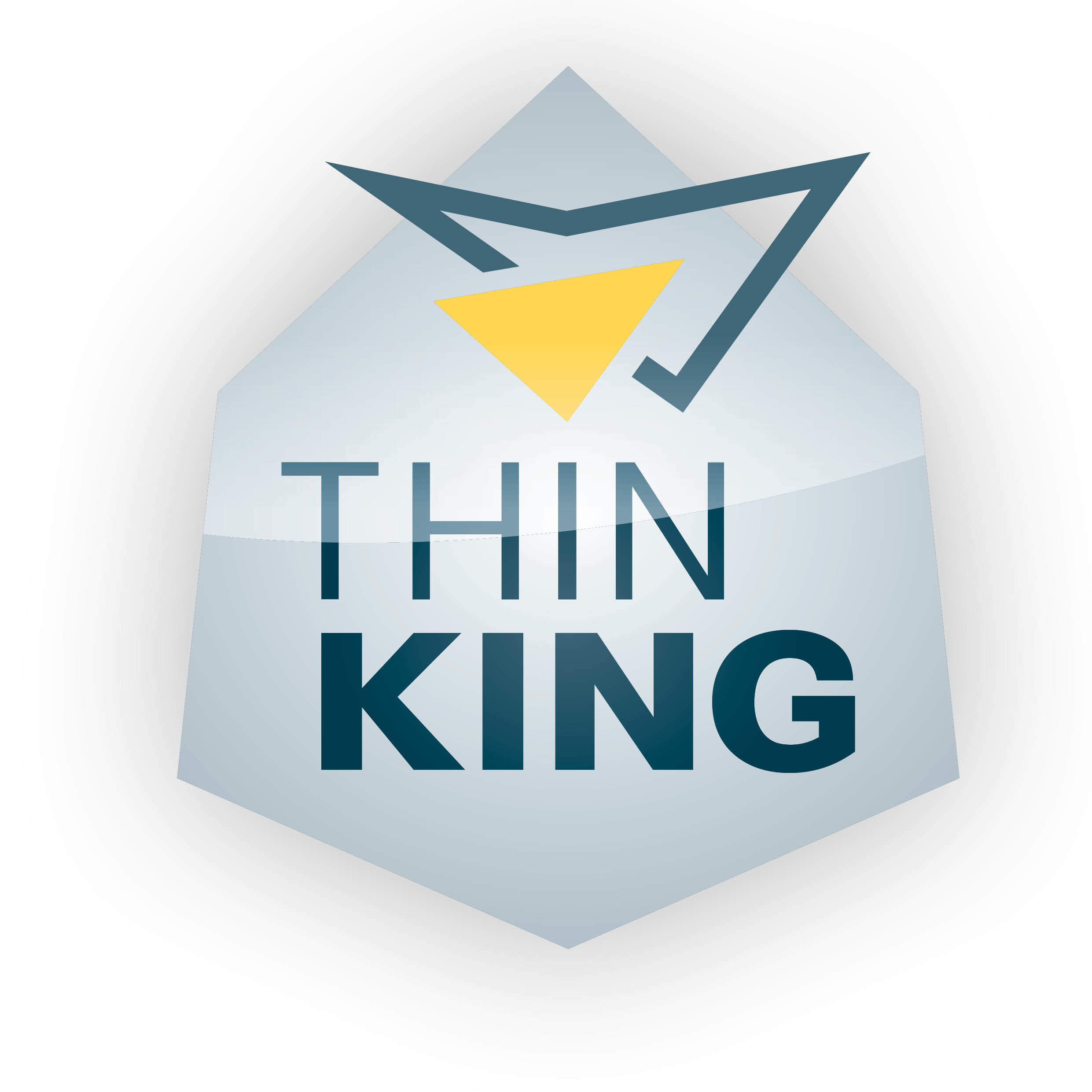 Thinking Award für InstaWerk